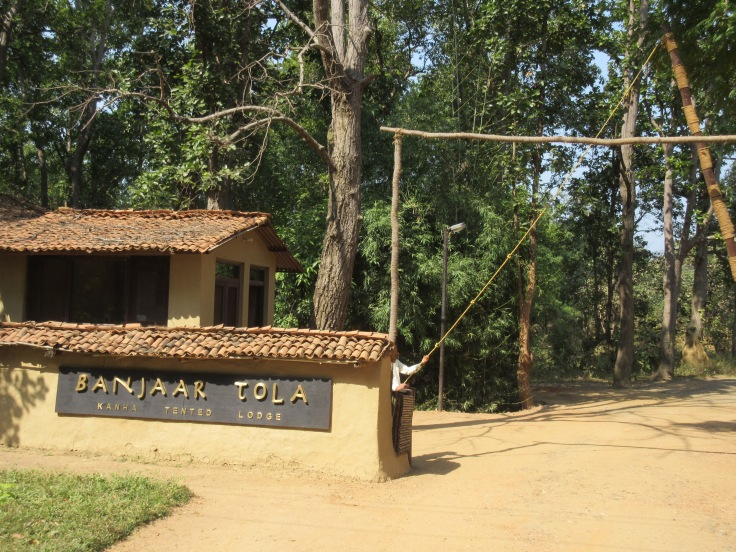 Banjaar Tola in Kanha National Park, India