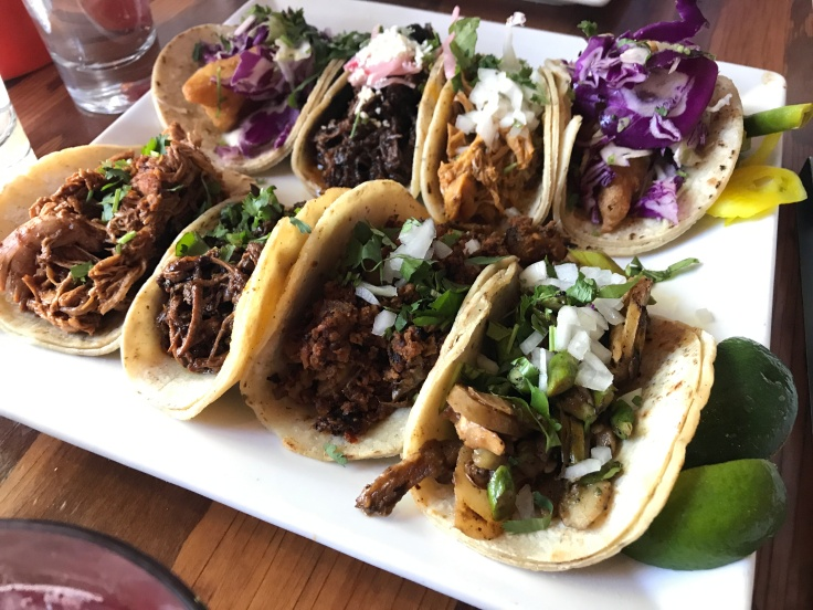 Eight tacos Sit on a Plate at Tacolicious in Downtown Palo Alto, California