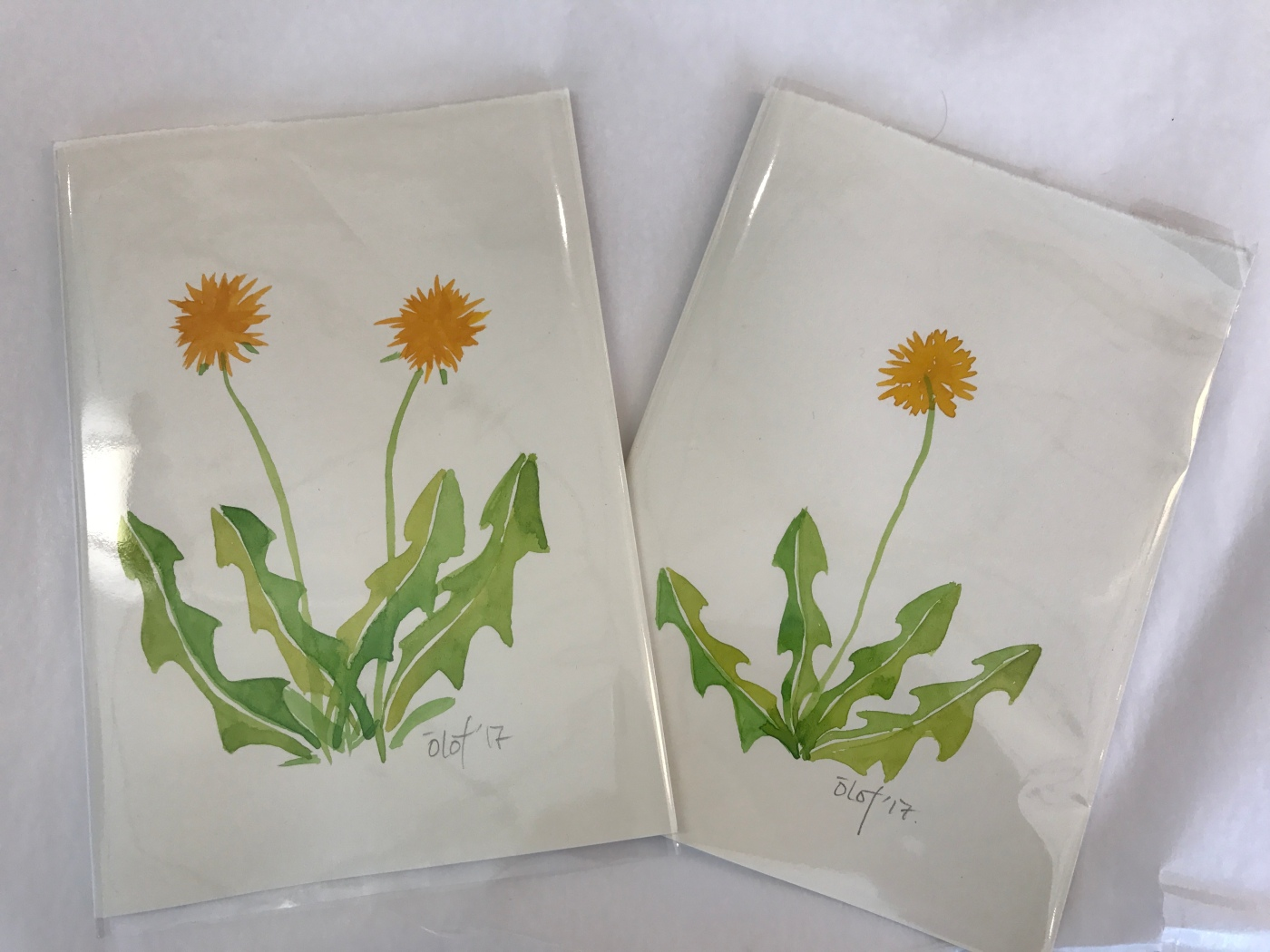 ​Kirsuberjatréð in Reykjavík, Iceland is a Shop that Will Cheer You Up Like Dandelions - Cards Designed by Local Artist Ólöf Erla Bjarnadóttir