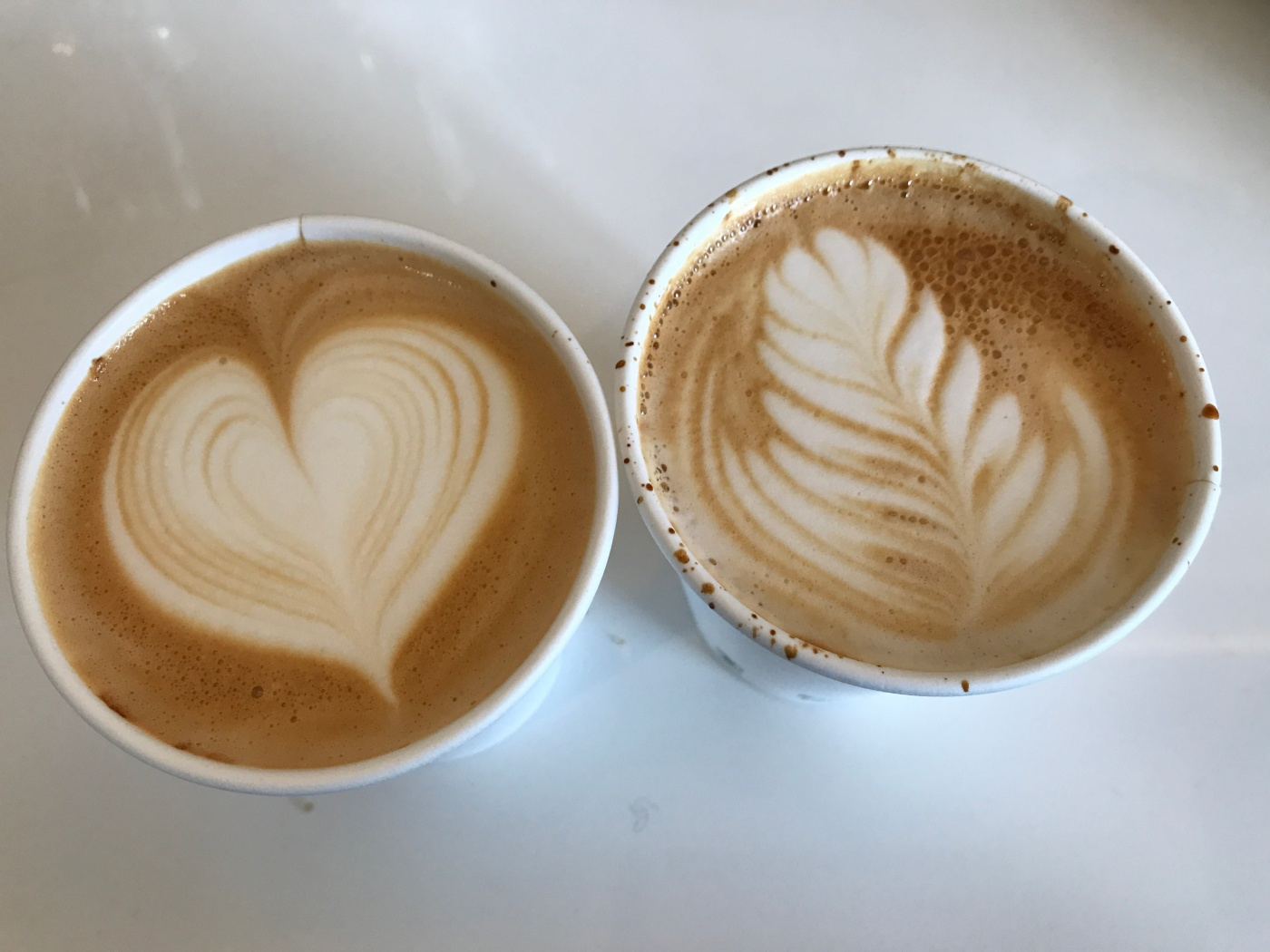 Just Brew It - A Pair of Cappuccinos at Drip Line in Oakland, California