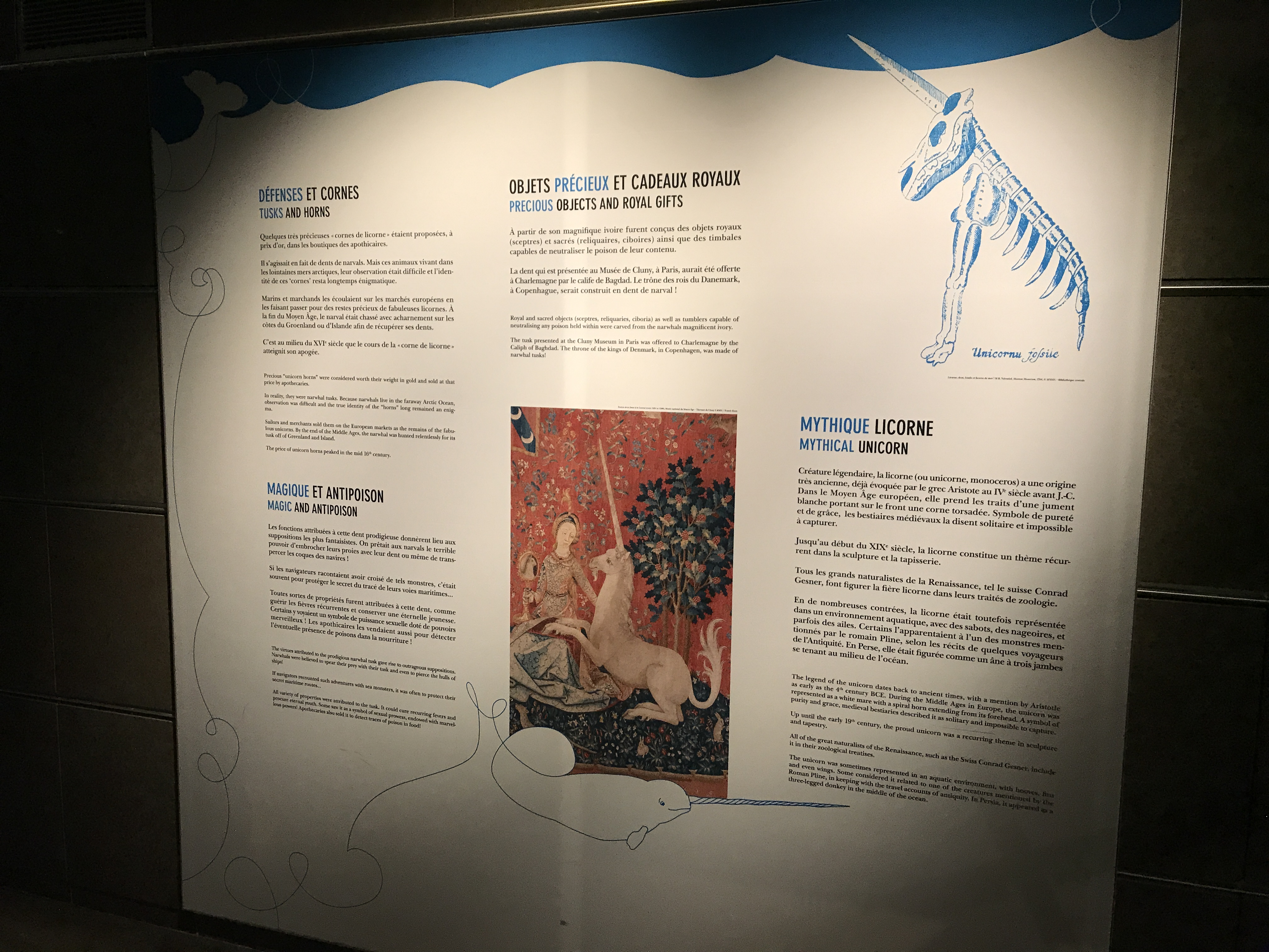 Kids Can Learn About Unicorn Myths and Their Tie to Narwhals at the Grande Galerie de L'Évolution in Paris, France