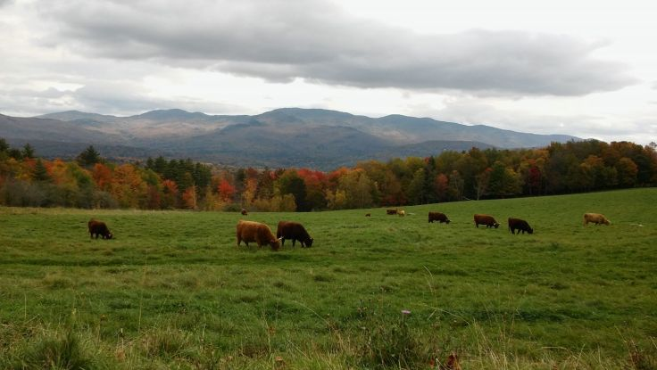 The Hills Are Alive With the Sound of Music - Autumnal View From the Trapp Family Lodge in Stowe, Vermont - Photo Courtesy of Matt Holmes