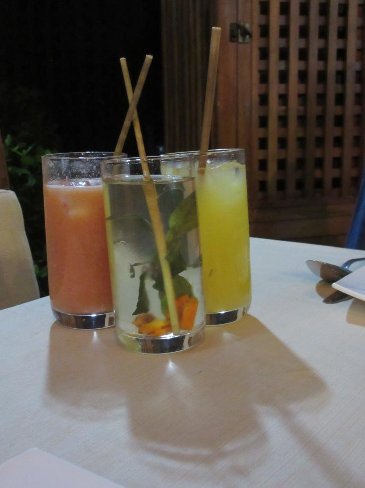 Sips of Local Flavor - El Romero Eco Restaurant in Las Terrazas, Cuba Serves a Drinks Made With Ingredients Like Carcuma (Tumeric), Guava, Papaya, Cass and Banana